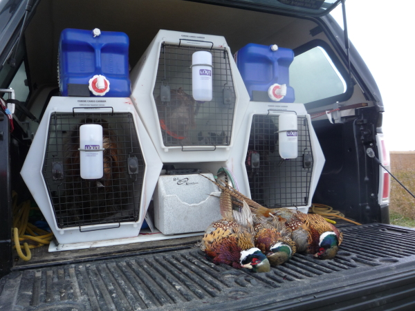 Get My Point Llc Complete Dog Transport Systems